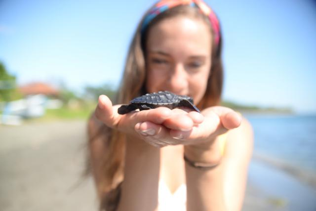 Girl holds sea turtle on teen travel program in Bali, Indonesia
