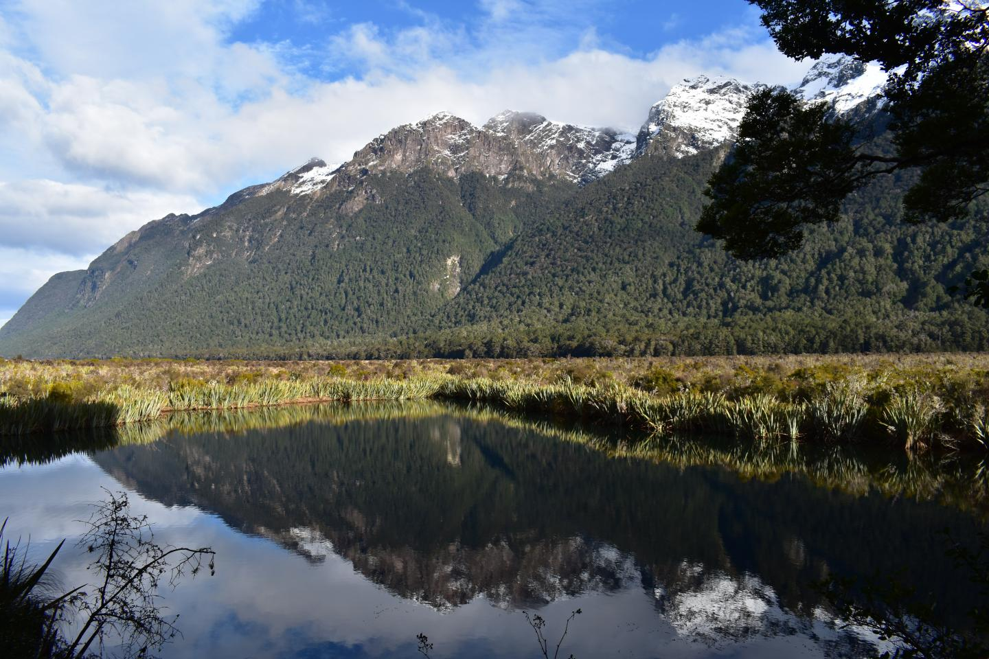 Scenic views of nature seen by teenage travelers during summer youth travel program in New Zealand
