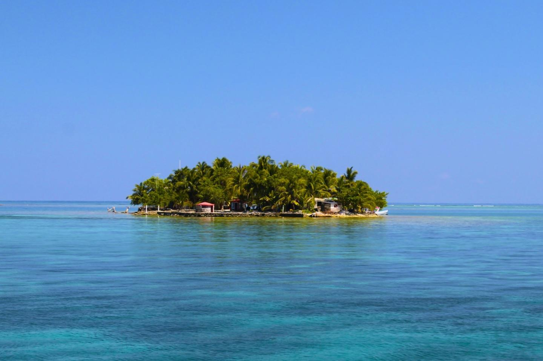 1 ReefCI Island x
