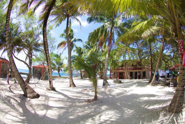 ReefCI Island Center 1