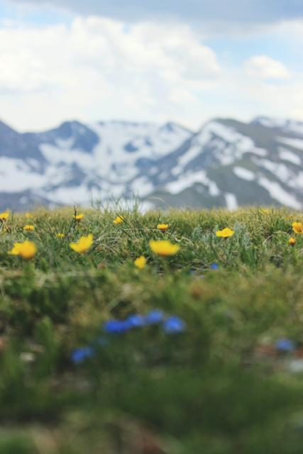Colorado Rocky Mountain Adventure