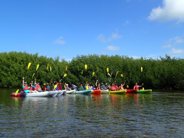 kayak tour for some marine life spotting