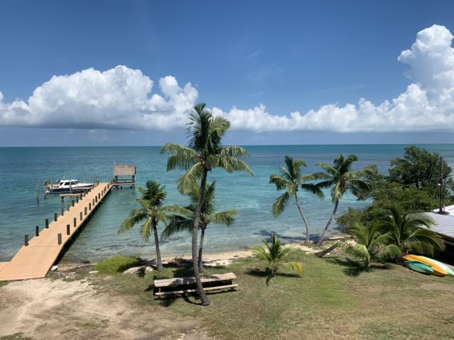the view from your bedroom at pigeon key