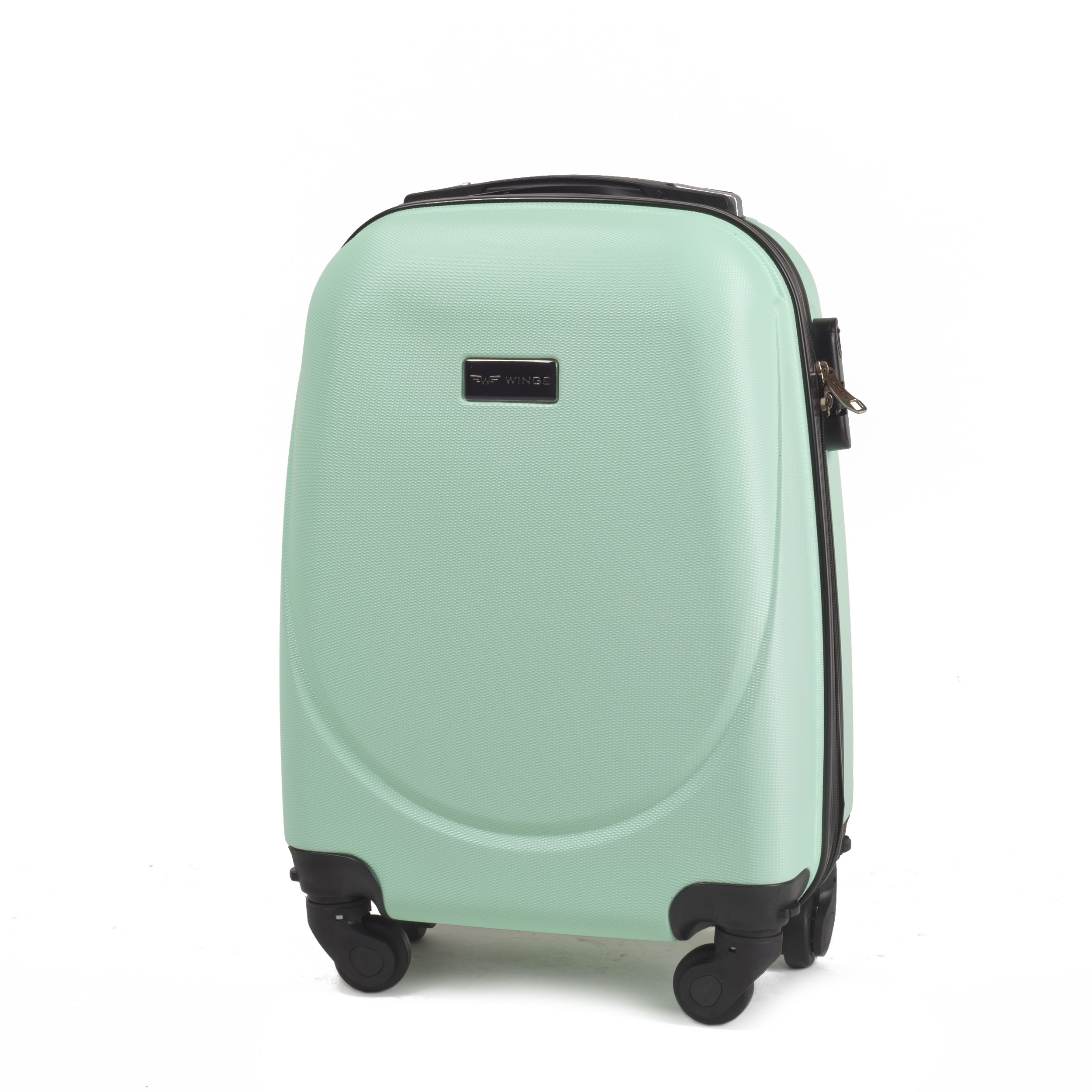Teen Girl Backpacks or Small Suitcases