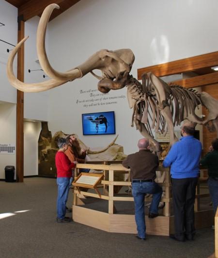 Paleontology Field Trip (Sunday)