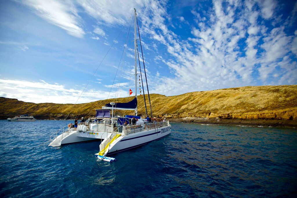 Molokini Snorkel and Whale Watch, Sunday February 6