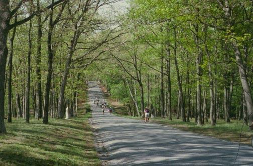 Confederate Avenue, Gettysburg battlefield