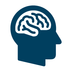 Science of the Human Body: All About the Brain (Brandee Gillham) - for ages 8-12 (with accompanying adult) or ages 13 & older