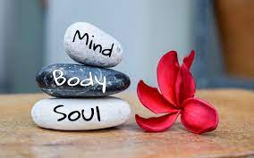 Mind, Body & Soul - Meredith Batts Trout