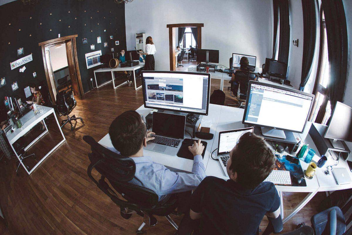 Professional Software Developer Traits
