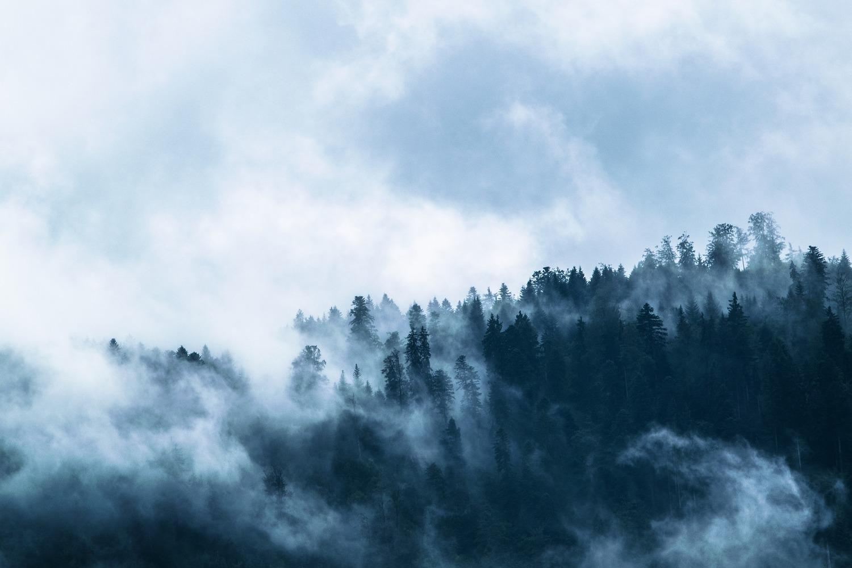 Fog 1535201 1920