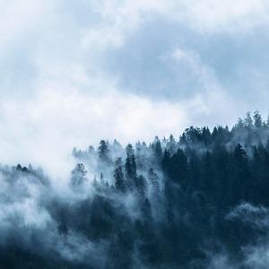 Square fog 1535201 1920