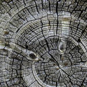 Square wood 1515746 1920