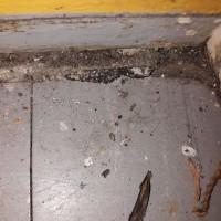 Insinööritoimisto K. Parila Oy - asbestia eteisen harmaassa vinyylilaatassa asbestia ja mustassa liimassa.jpg