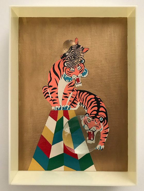 Zebra Tiger