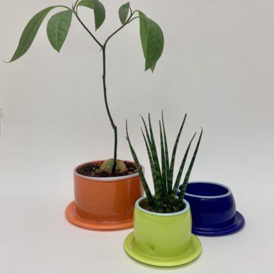Folded Plant Pots