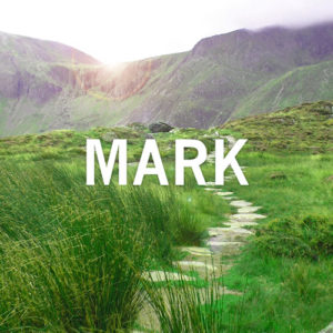 sermon-thumbnail-mark-series