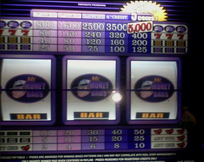7 clans paradise casino - 2
