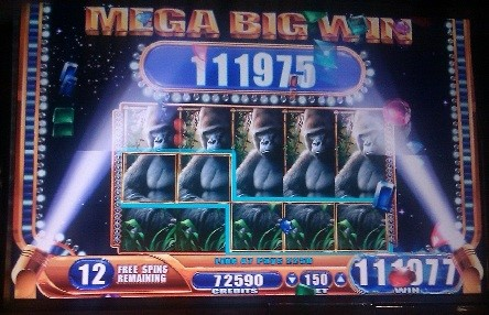 Queen Of The Wild Slot Machine by WMS