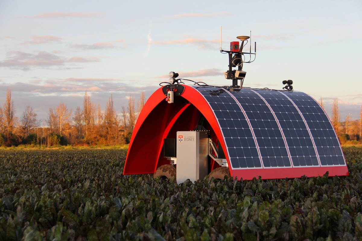Meet Ladybug, The World's First Farm-Bot
