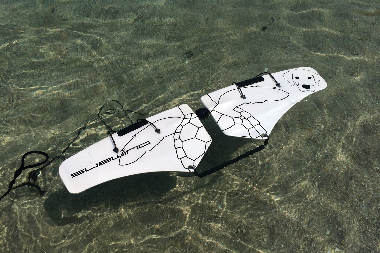 Fly Underwater With The Subwing