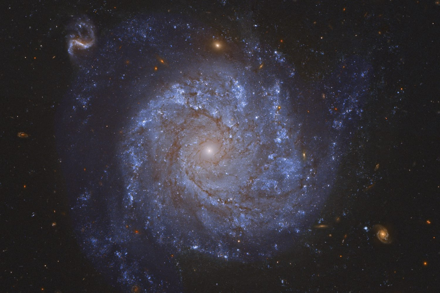 NASA's Hubble Finds a 'Zombie' Star in Spiral Galaxy