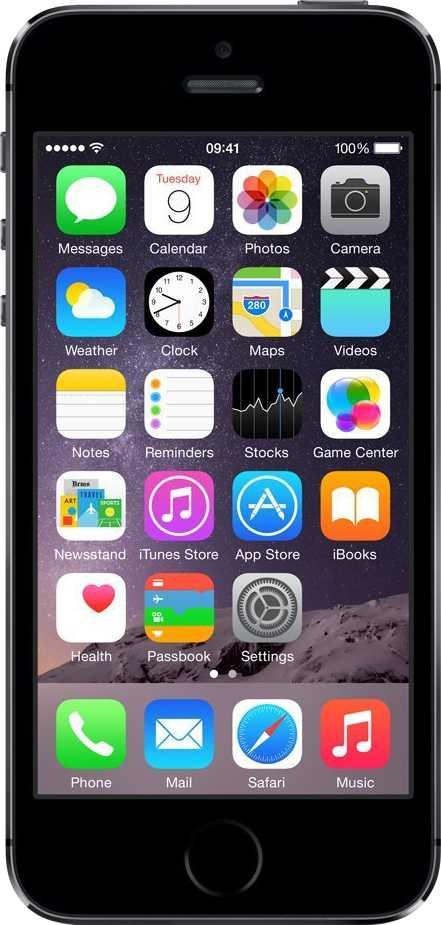 Apple iPhone 5S Grigio Siderale