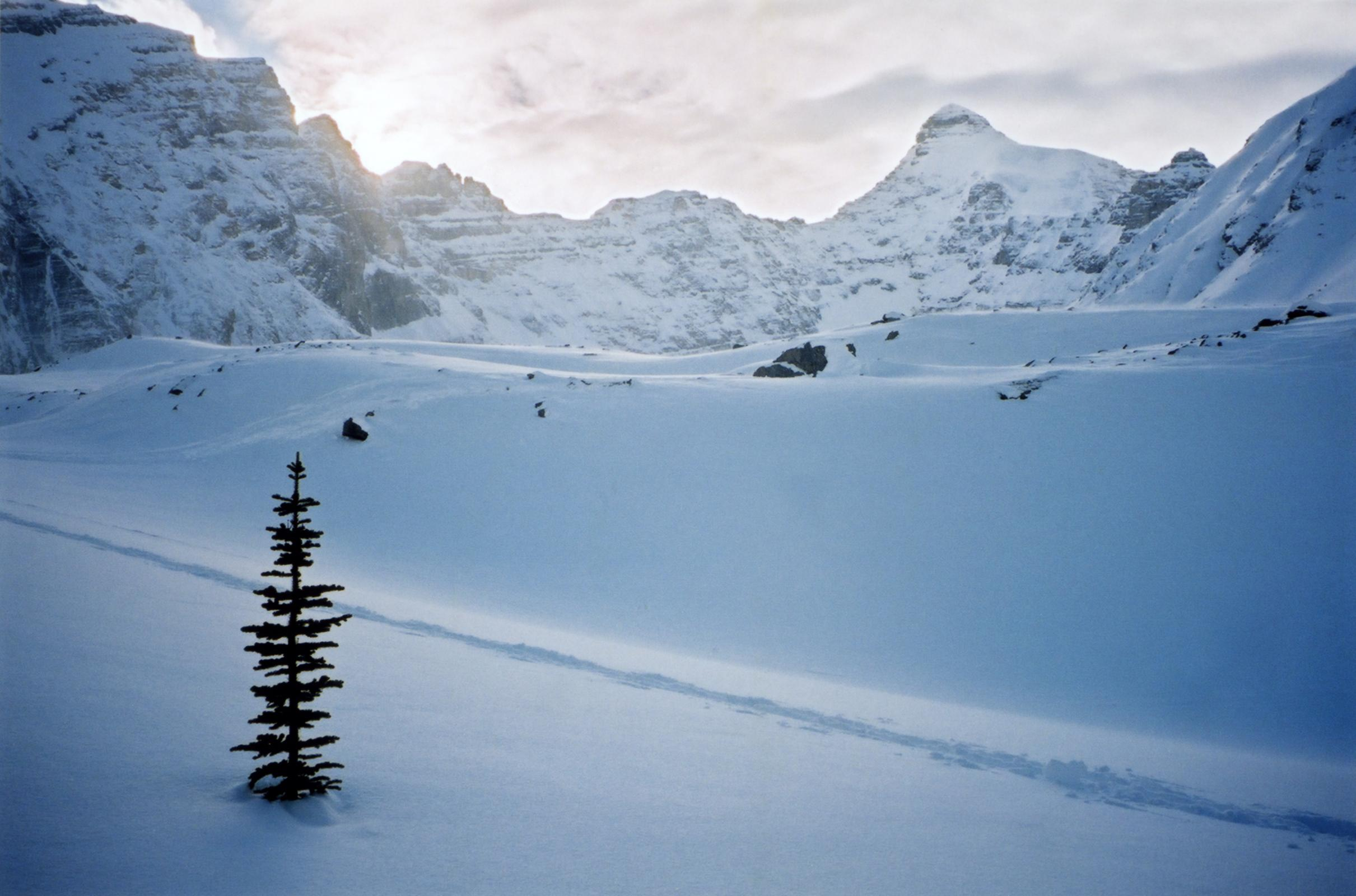 Banff Mount Norquay