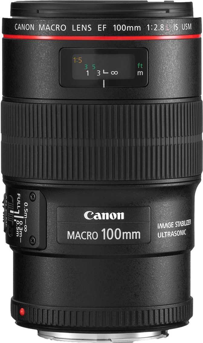 ≫ Canon EF 100mm F 2.8L Macro IS USM vs Sigma 105mm F2.8 EX DG OS HSM Macro    Comparação de lentes de câmera Canon 8770466b63