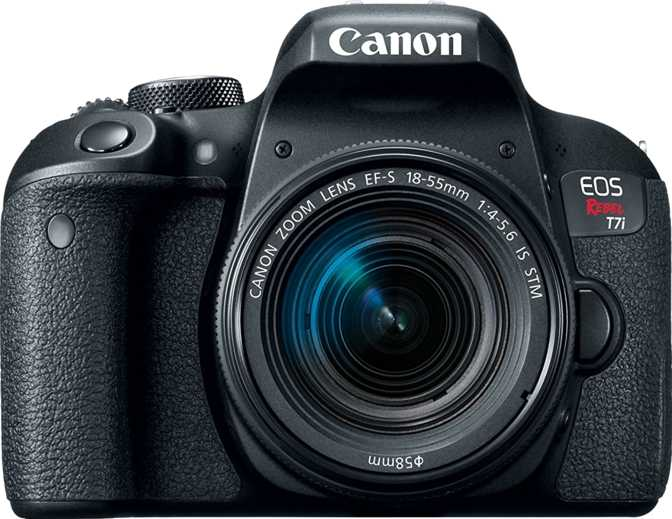 Canon EOS Rebel T7i + Canon EF-S 18-55mm f/4-5.6 IS STM