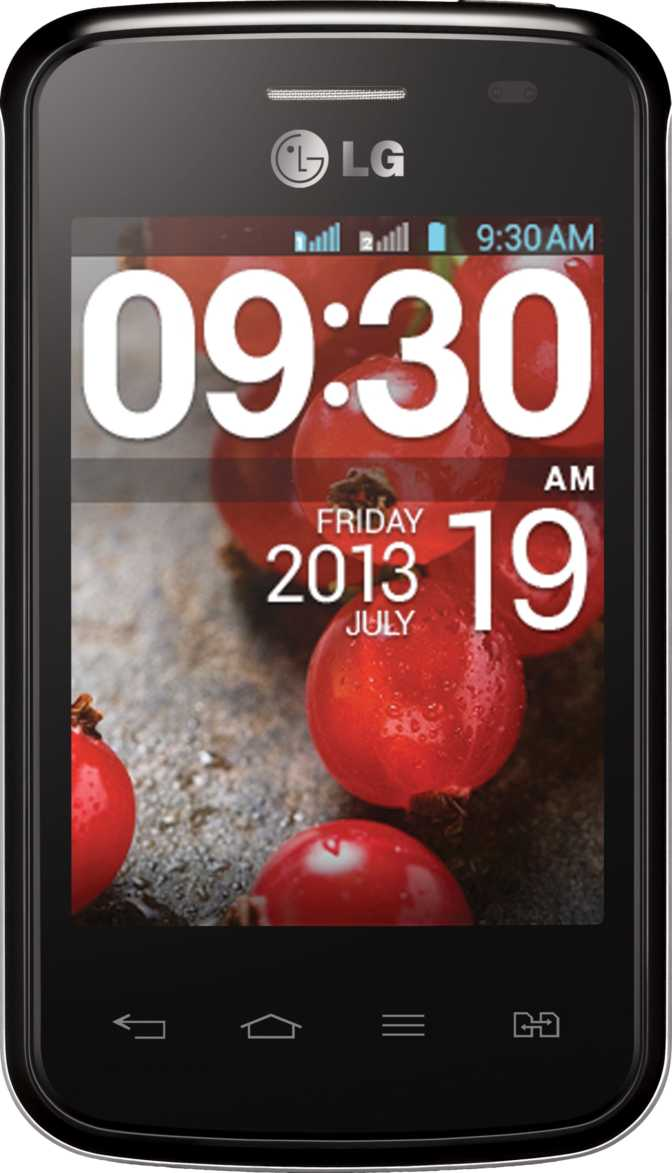 LG Optimus L1 II Dual