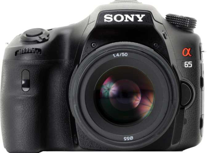Sony SLT-A65V + Sony 50mm/ f1.4