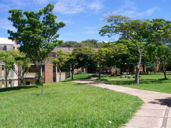 The University of Campinas