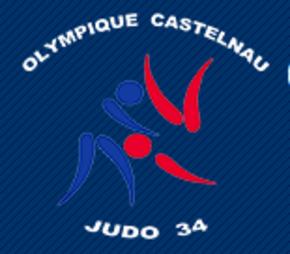 Show-olympique_castelnau_judo_34