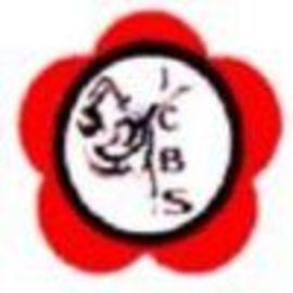 Show-logo