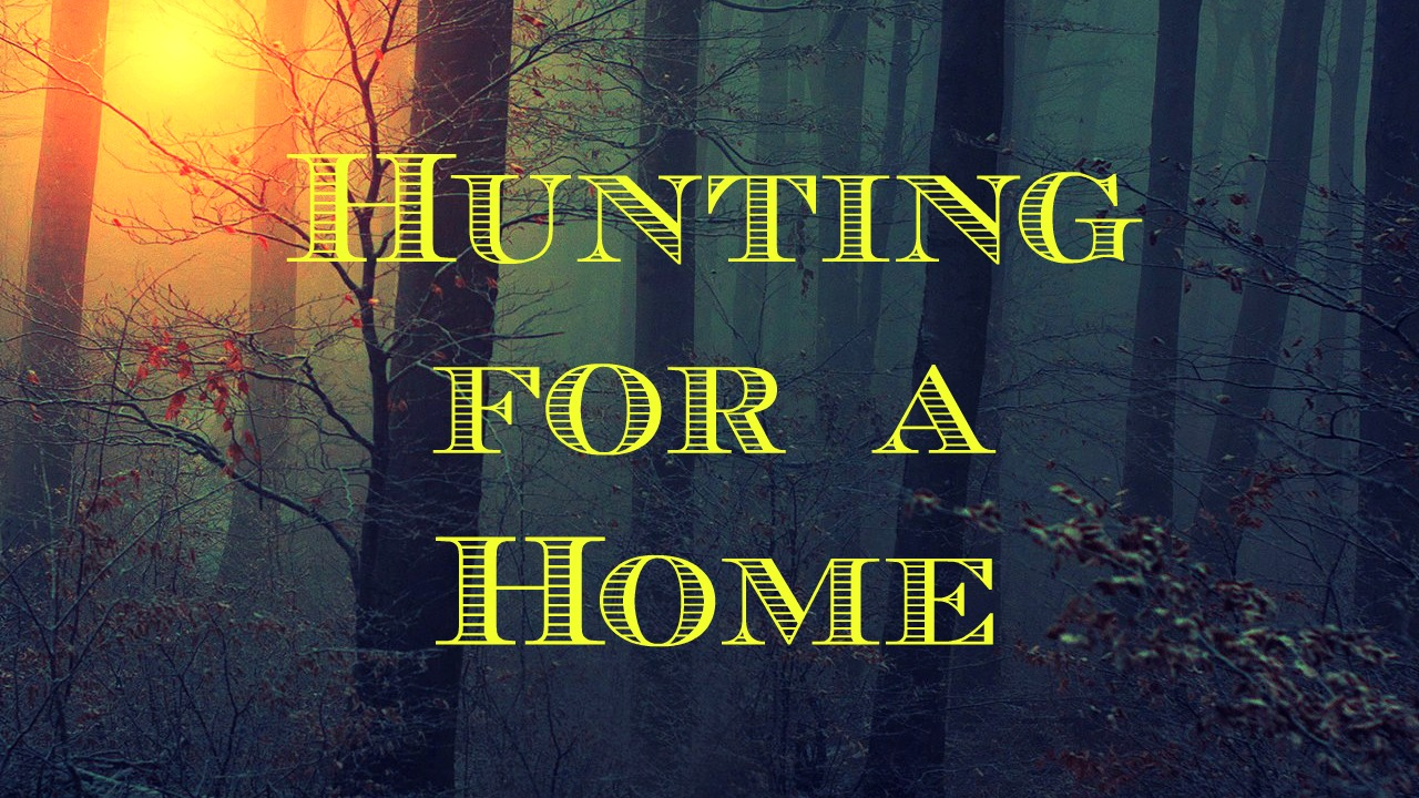 Hunting for a Home