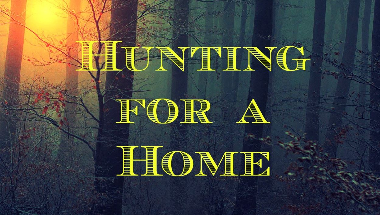 Hunting for a Home Image