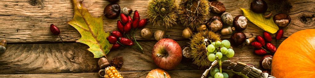 thanksgiving_2016_header