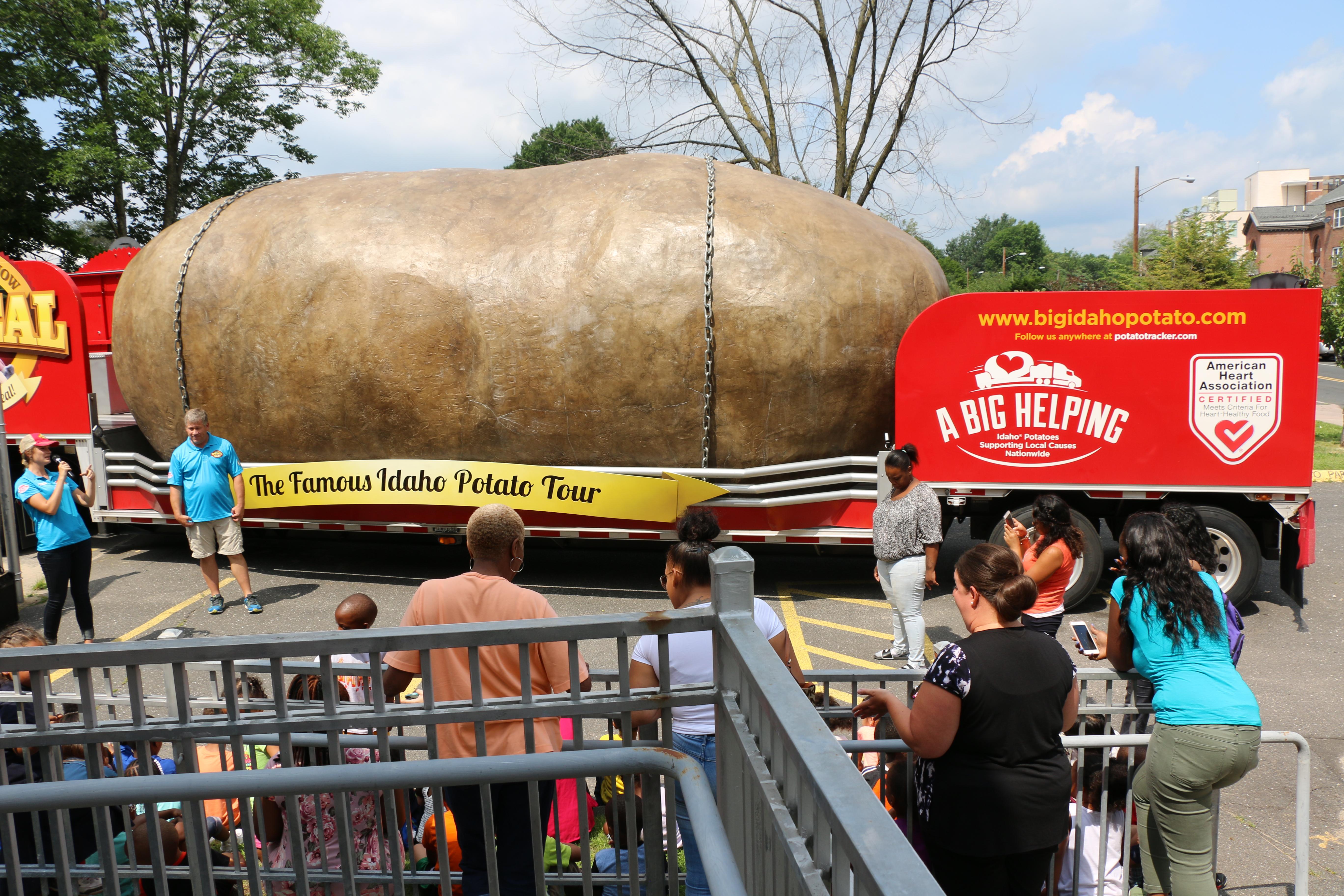 TRP Potato 17