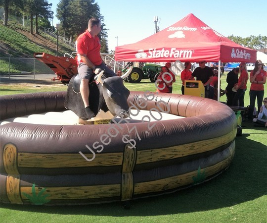 Mechanical bull state farm