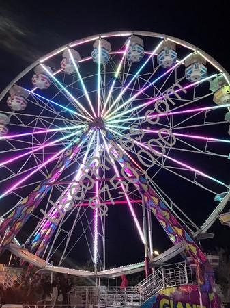 Pink giant wheel 1