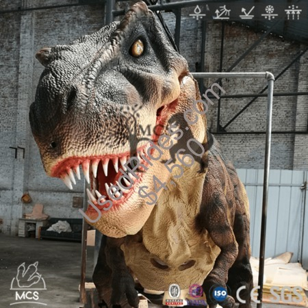T rex costume adult size for county fair dctr637 %281%29