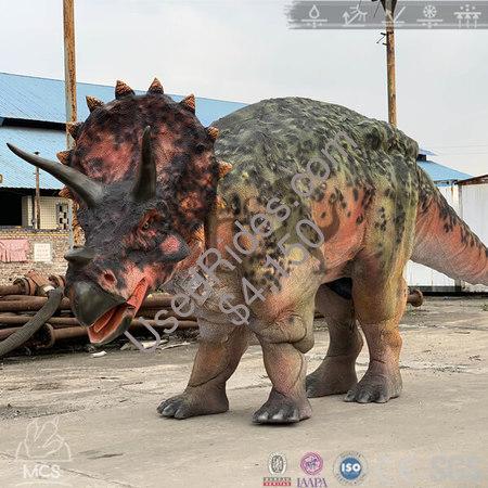 16'5'' lifelike triceratops costume %282%29