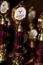 2012 slvsef awards 008