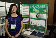 Lab crabs