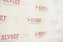 005 slvsef 2014 awards