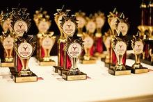 009 slvsef 2014 awards