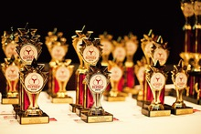 010 slvsef 2014 awards