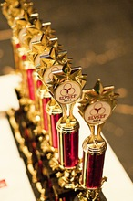 011 slvsef 2014 awards