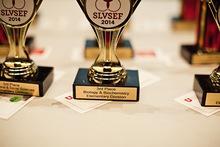 016 slvsef 2014 awards